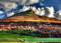 Autumn Gold - Roseberry Topping